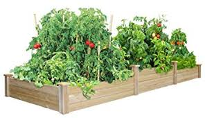 amazon com greenes fence tall tiers dovetail raised garden bed
