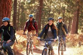 Group Friends In Helmets Riding Bikes A Forest Close Up