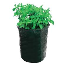 100 Cheap Container Home 2x Round Plant Pots Grow Bag Pouch Root Aeration