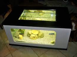 bon coin aquarium occasion le bon coin aquarium d occasion 28 images vendu aquarium
