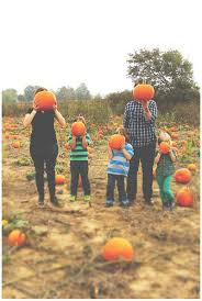 Jacksonville Nc Pumpkin Patch by Cutest Fall Family Ideas Photography By Marcyharrisphotos Com
