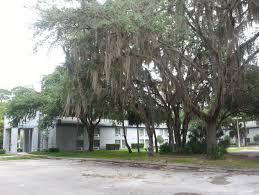 Watchtower Group Buys Former FAA Training Center In Palm Coast ... Travel Site Ranks Palm Coast No 1 In Florida For Vacation Rentals Tasure Fl 2018 Savearound Coupon Book Oceanside Ca Past Projects Pacific Plaza Retail Space Elevation Of Guntown Ms Usa Maplogs Daytona Estate First Lady Nascar Could Fetch Record News Thirdgrade Students Save Barnes Noble From Closing After Jennifer Lawrence At The Hunger Games Cast Signing At Shop Legacy Place Beach Gardens Shopping Restaurants Events Luxury Resortstyle Condo Homeaway Daignault Realty