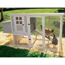 Precision Pet Products Hen House Chicken Coop Chicken Coops At