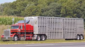 100 Cattle Truck Senate Bill Would Ease HOS ELD Demands On Livestock Haulers