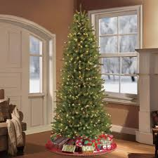 Pre Lit Pencil Christmas Trees by Puleo 7 5 Ft Pre Lit Slim Fraser Fir Artificial Christmas Tree