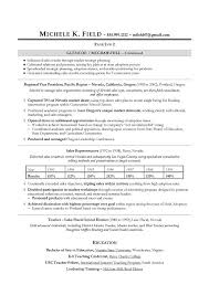 Regional VP Sales Sample Resume