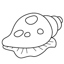 Luxury Sea Shells Coloring Pages 23 On For Kids With