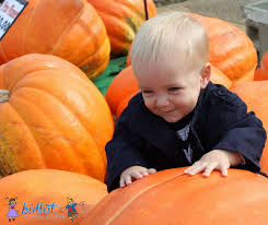 Oak Glen Pumpkin Patch Address by Pumpkin Patches Near Chicago Kidlist U2022 Activities For Kids