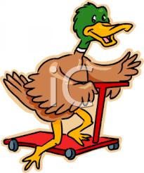 Cartoon Duck Riding A Scooter