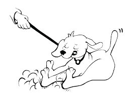 Husky Coloring Page Dog Pages