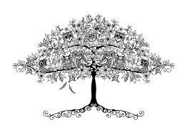 Johanna Basford Tree W Owls