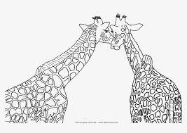 Cute Giraffe Coloring Sheets