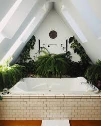 pflanzen fürs bad verwandeln es in eine grüne oase fresh