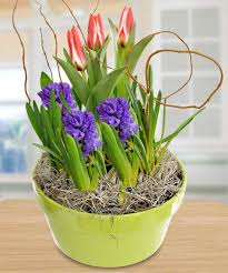 fill your home with flowers in honor of national garden month