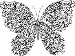 Coloring Page Butterfly For Adults Book Pictures Butterflies