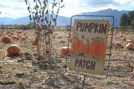 Pumpkin Patch Near Las Vegas Nv by Corley Ranch Harvest Festival U2013 Around Carson