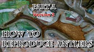 Moose Shed Antler Mounting Kit by How To Reproduce Deer Antlers Part A Youtube