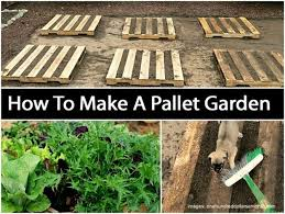Pallet Gardening Ideas DIYHowto Create A Garden Video