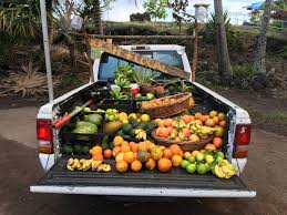 Free Images : Fruit, Truck, Oranges, Lemon, Lime, Citrus, Avocado ... Truckin With Tlt And Dogzilla Nissan 360 Self Propelled Truck Mounted Lime Ftiliser Spreader Ryetec Vivian Eats Again Food 2015 Chili Mango The Top Businses In California Sg On Foot Singapore Blog Best Ram Lemon Edition Dave Smith Custom Limesambal Fish Taco Recipe From A Houseful Of Boys Lunch At Trucks The Neighborhood Juan Chavez Taffys Shake Gmc 7000 Diesel Lee Valley Auctions Steves Key Pie 1953 Ford F100 Delivery Truck Stock Photo
