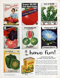 Vigoro Plant Food Ad Seed Packets Lawn Care Garden Gardening 1956 Original  Vintage Wall Decor