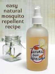 how to make an easy bug repellent recipe homemade natural and