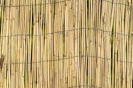 100 Bamboo Walls Garden Wall Fence Texture Background Free Stock Photo Picjumbo