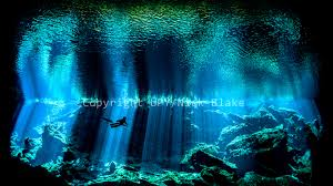 Spencers Lava Lamp Contest by 2017 Underwater Photographer Of The Year Results And Winners