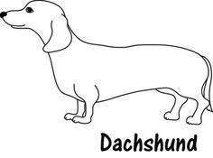 Weiner Dog Clipart Image Cute Adult Or Dachshund In Black And White Line