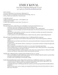 Resume Personal Background Sample Chef Simple Format