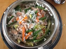 cuisiner pour chien recettes pour chien