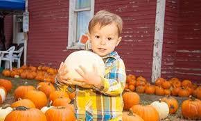 Pumpkin Patches Around Colorado Springs by Top 27 Halloween Events In Colorado Springs Visit Colorado Springs