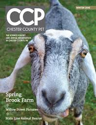 Chester County Pet Winter 2016/2017 By Chester County Pet - Issuu Nancy The Barn At Spring Brook Farm Animalassisted Acvities Hemlock Ultimate Equestrian Nature Lovers Estate Yoshi Farms For City Kids Jackson House Innjackson Our Programs Maple Cream Mayfair Greater Merrimack Valley Great State Park Cherry Canton Connecticut In Love Every Time I Pass By
