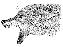 Free Designs Fantastic Coloring Pages Of Animals For Adults Animal