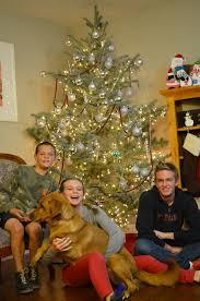 Becks Christmas Tree Farm by Christmas Tree 2014 Amy Roskelley
