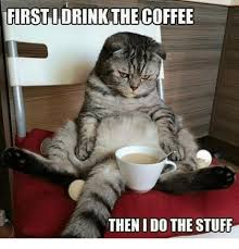 cat coffee idrink the coffee then i do the stuff grumpy cat meme on me me