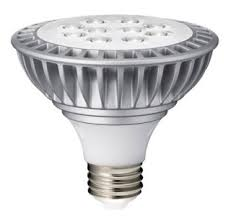 what s the roi payback period of led light bulbs and other green