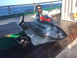 Did Hard Merchandise Sinks by Wicked Tuna Home Facebook