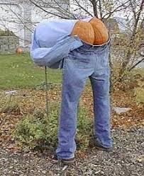 Best Pumpkin Carving Ideas 2015 by 15 Best Pumpkin Ideas Images On Pinterest Halloween Costumes