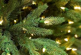 Pre Lit Flocked Christmas Tree Canada by Prelit Christmas Trees Guide