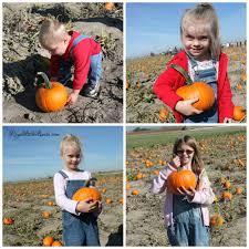 Lumpkin The Pumpkin by Pumpkin Archives