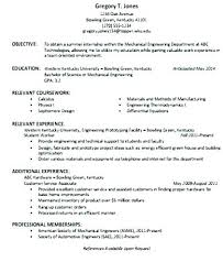 Resume Overview Examples Objective Statement Customer Service Summary For