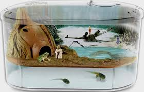 Star Wars Tank Decorations by Star Wars Dagobah Frog Habitat The Ultimate Christmas Gift For 2009