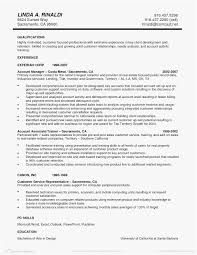 15 Lovely Executive Resume Template Word Sample