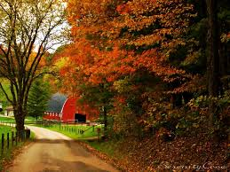 Barn_in_autumn_landscape.jpg (1600×1200) | AUTUMN | Pinterest ... Xlentcrap Barns Flowers Stuff 2009 In Vermont The Fall Stock Photo Royalty Free Image A New England Barn Fall Foliage Sigh Farms And Fecyrmbarnactorewmailpouchfallfoliagetrees Is A Perfect Time For Drive To See National Barn Five Converted Rent This Itll Make You See Red Or Not Warming Could Dull Tree Dairy Cows Grazing Pasture With Dairy Barns Michigan Churches Mills Covered Mike Of Nipmoose Engagement Beauty Pa Leela Fish Rustic Winter Scene Themes Summer Houses Decorations