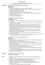 Download Ecommerce Category Manager Resume Sample As Image File