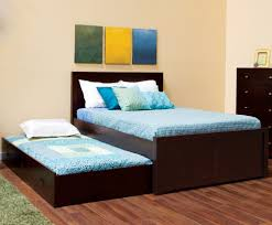 Full Size Trundle Bed Frame and Bunk Bed Bed and Shower