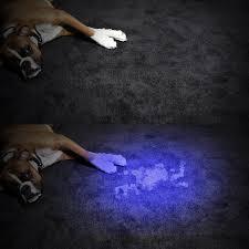 Dog Urine Hardwood Floors Stain by Pet Uv Led Black Light Flashlight Surlight Ultraviolet Zoomable