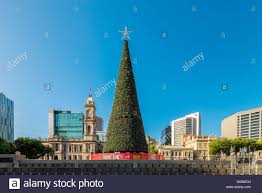 adelaide australia january 3 2016 christmas tree installed at