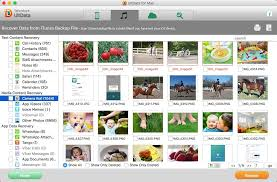 How to View and Access iPhone Files without iTunes on Mac