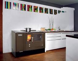 cuisine poele a bois la cuisinière à pellets et au bois